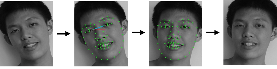 A robust real-time algorithm for facial shape recovery ...